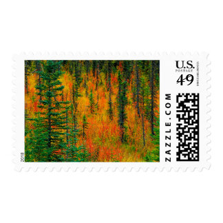 Autumn in a meadow postage