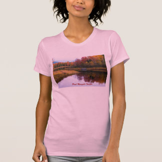 Autumn in Acadia National Park Tshirts