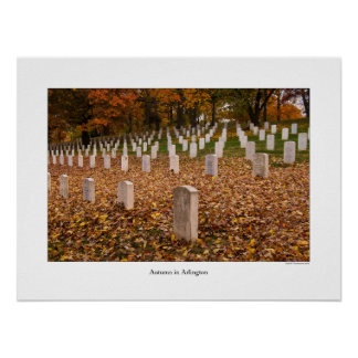 Autumn in Arlington Poster