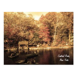 Autumn in Central Park Postcard