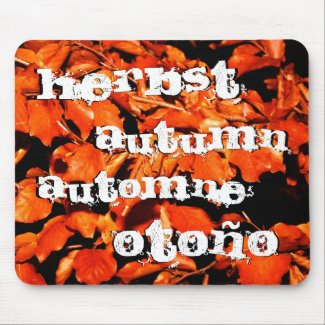 Autumn in Forest Mouse Pad