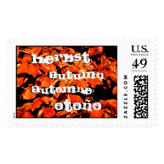 Autumn in Forest Stamp