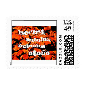 Autumn in Forest Postage Stamp