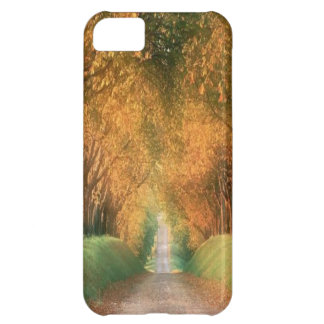 Autumn in Germany Case-Mate iPhone 5 Cover For iPhone 5C
