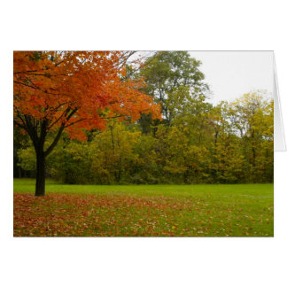 Autumn in Highland Park Greeting Card