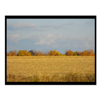 ~ Autumn in Lancaster County ~ 56 Postcard