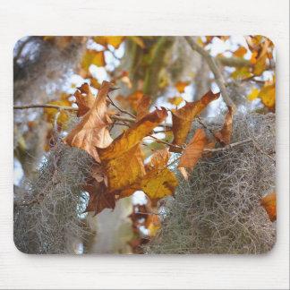Autumn in Louisiana Mouse Pad