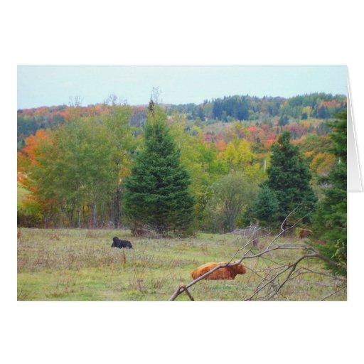 Autumn_In_Maine_3 Felicitacion