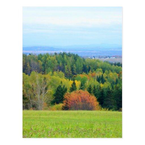 Autumn_In_Maine Tarjetas Postales