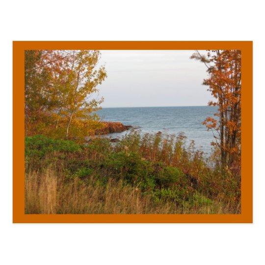 Autumn in Minnesota Postcard