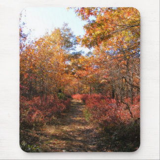 Autumn in New England 32 mousepad