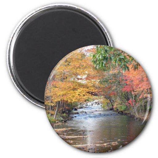 Autumn in New England Fridge Magnet
