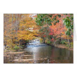 Autumn in New England Greeting Card