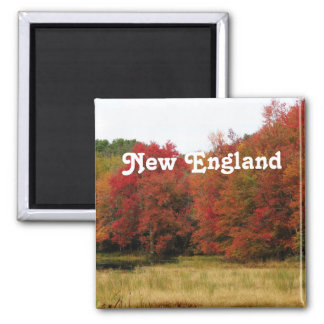 Autumn in New England Magnets