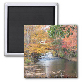 Autumn in New England Refrigerator Magnet
