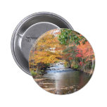 Autumn in New England Pinback Button