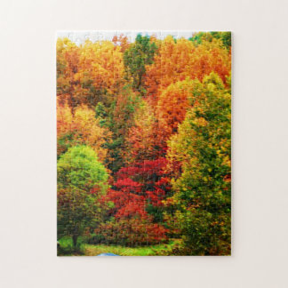 AUTUMN IN NEW YORK STATE puzzle