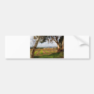 Autumn in the Barossa Valley South Australia Bumper Sticker