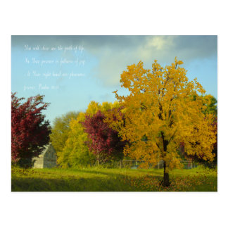 Autumn in the Country Postcard