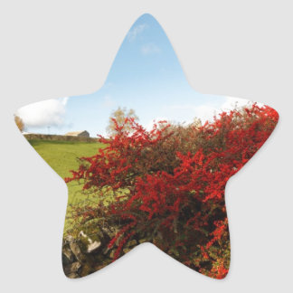 Autumn in the Country Sticker