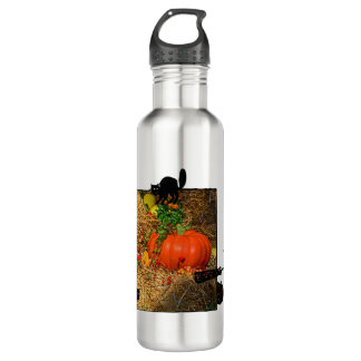 Autumn in the Fall Pumpkin Patch Water Bottle