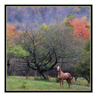 Autumn in the Horse's Orchard Poster