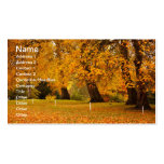 Autumn in the park Double-Sided standard business cards (Pack of 100)