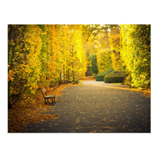 Autumn in the park in Gdansk, Poland Postcard