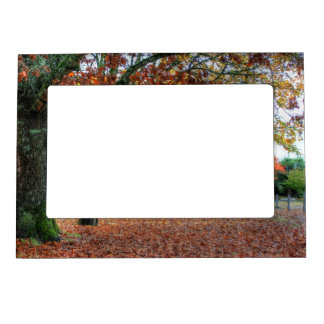 Autumn in the Park Magnetic Photo Frame