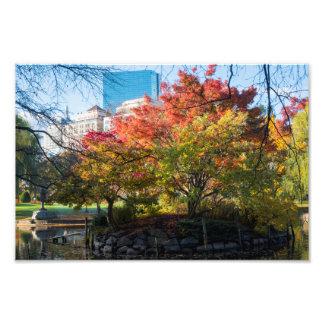 Autumn in the Public Garden Boston MA Photo Print