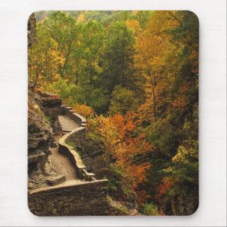 Autumn in Treman State Park Mouse Pad