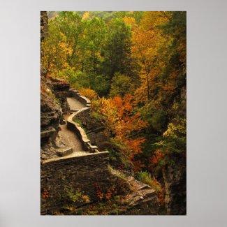 Autumn in Treman State Park Poster