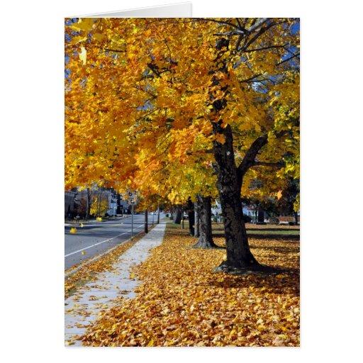 Autumn in West Brookfield, MA Note Card