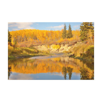 Autumn in Whitemud Ravine Canvas Print