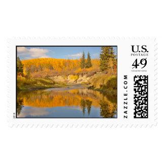 Autumn in Whitemud Ravine Stamps