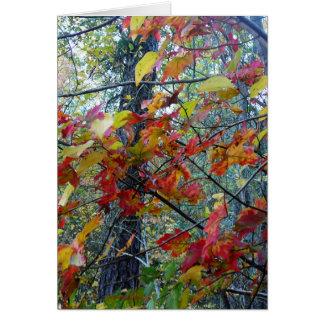 Autumn Incarnate Greeting Card