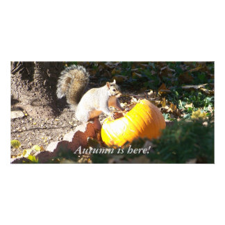 Autumn is here! photo greeting card