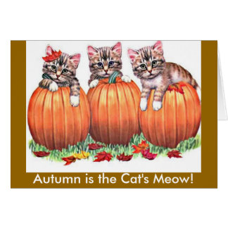 Autumn is the Cat's Meow Card