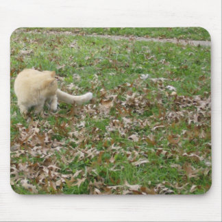 Autumn Is The Most Beautiful Time Of Year Mouse Pad