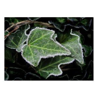 Autumn Ivy ~ ATC Large Business Card