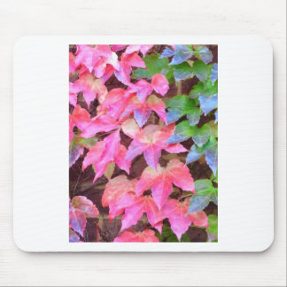 Autumn Ivy Mouse Pad