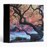 Autumn Japanese Maple Tree Vinyl Binder