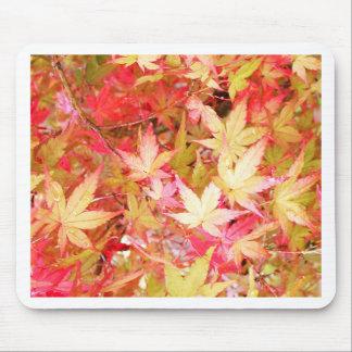 autumn.jpg mouse pad
