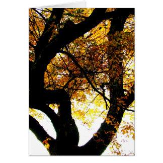 Autumn kaleidoscope card