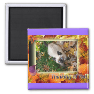 Autumn Kitty, Thinking of You Magnet