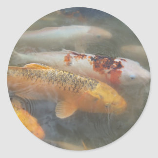 Autumn Koi Classic Round Sticker