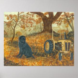 Autumn Labrador Poster