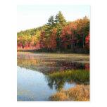 Autumn Lake 2 Postcard