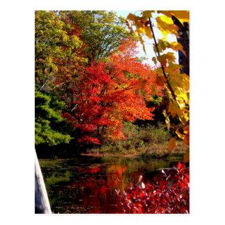 Autumn Lake 4 Post Card