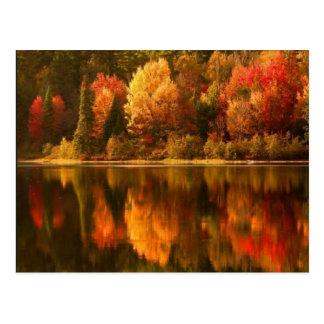 Autumn Lake Postcard